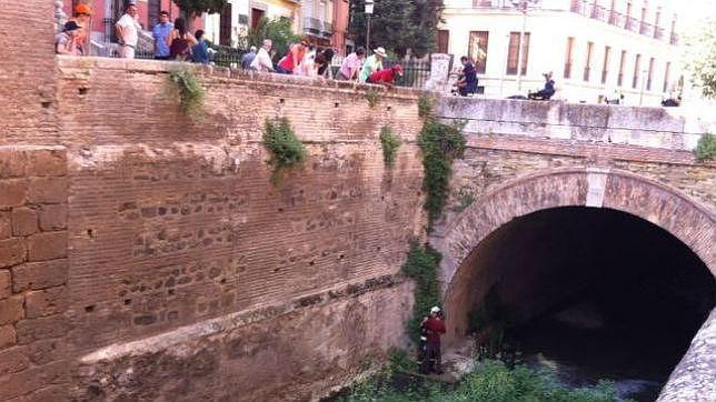 Rescatan a un hombre ebrio en el río Darro de Granada, junto a la Alhambra