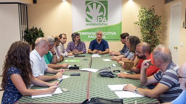 El PA celebrará el 25 de julio un convención extraordinario para discutir sobre su posible disolución política