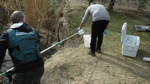 Agentes de la Guardia Civil toman muestras del vertido de El Tejar para su investigación