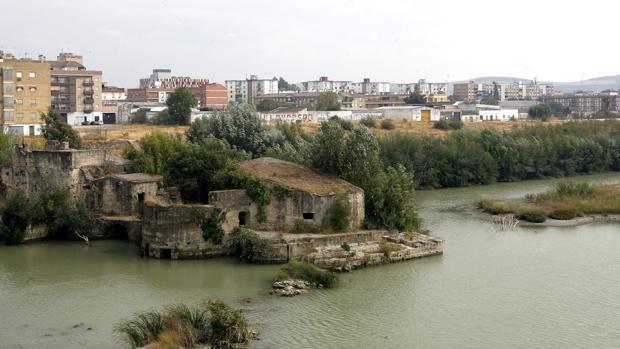La franja del Cordel de Écija más cercana al puente de San Rafael