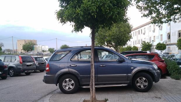 Coches mal estacionados en el Campo de la Verdad, en una imagen faciltada por la Asociación Guadalquivir