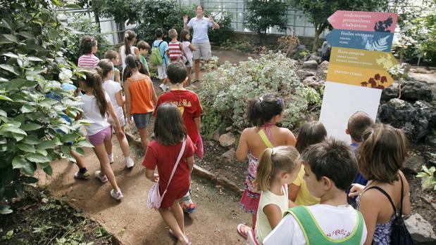 Niños en una actividad de la Escuela de Verano Municipal en el Jardín Botánico