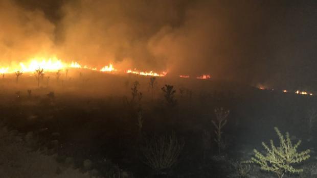 Imagen de los pastos en llamas ayer en el yacimiento de Ategua en Santa Cruz