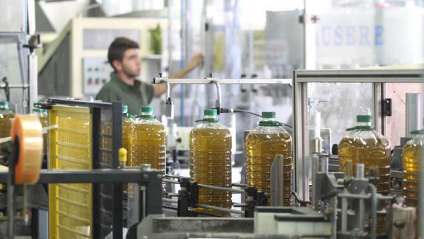 Envasado de aceite en una fábrica cordobesa