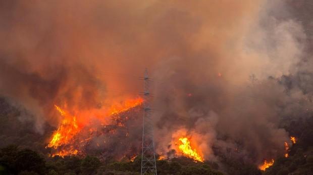 El incendio se ha declarado en Peñas Blancas, paraje de monte de Estepona