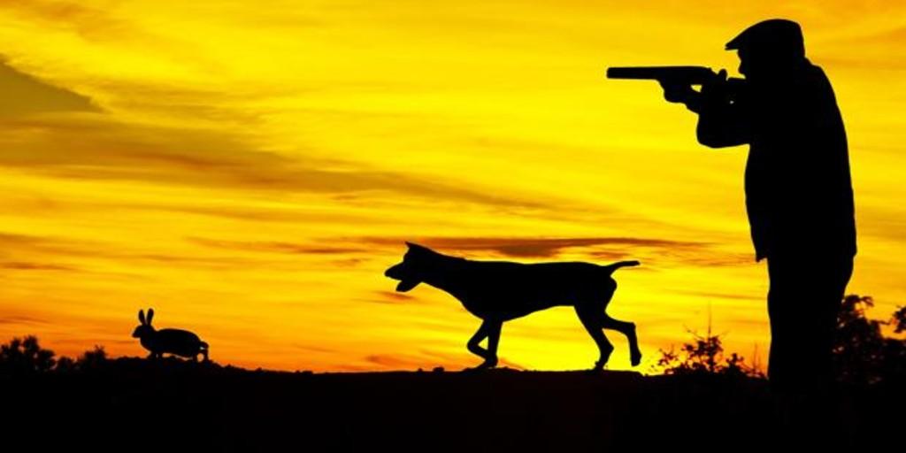 En plena pandemia, la Junta autoriza a los cazadores a moverse libremente por Andalucía