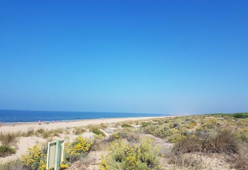 Playa de Los Enebrales, en Huelva