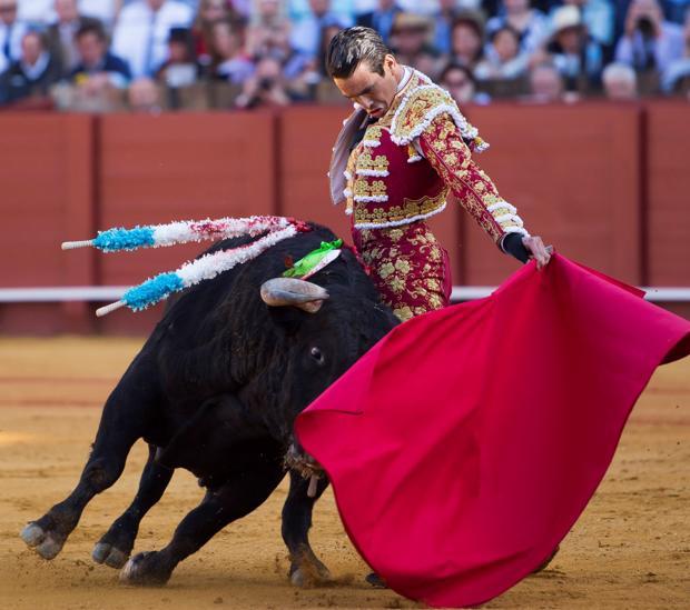 José María Manzanares, con el toro al que desorejó