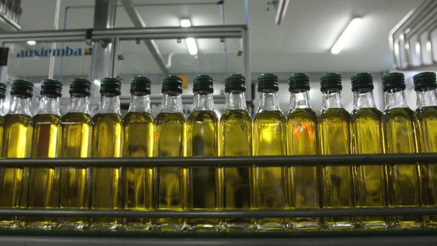Las importaciones de aceite de oliva de Siria y Turquía se han multiplicado