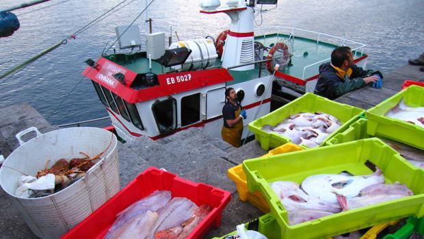 El Parlamento Europeo prohíbe de forma total y definitiva la pesca eléctrica en Europa