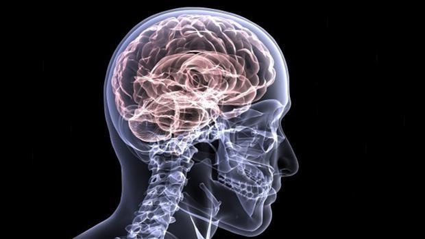 Descubren cinco nueves genes asociados al alzhéimer