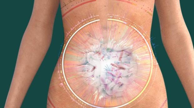 Miles de microorganismos viven en nuestro cuerpo