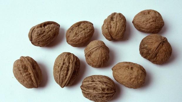 Las nueces son frutos secos muy saludables